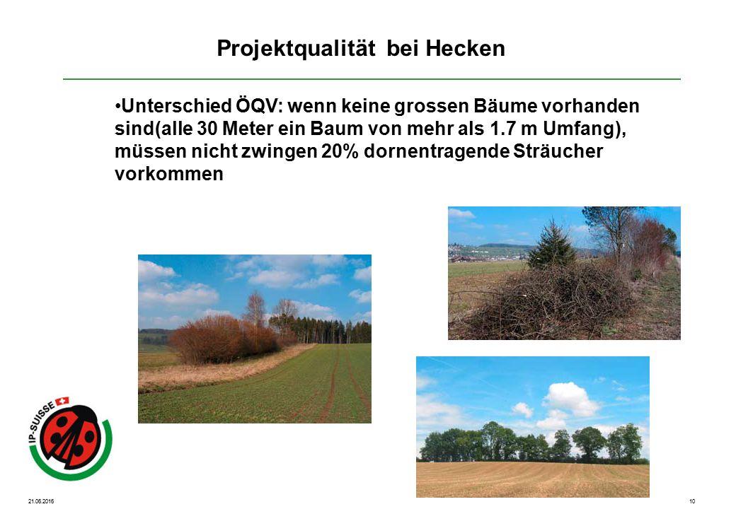 21.06.201610 Unterschied ÖQV: wenn keine grossen Bäume vorhanden sind(alle 30 Meter ein Baum von mehr als 1.7 m Umfang), müssen nicht zwingen 20% dornentragende Sträucher vorkommen Projektqualität bei Hecken