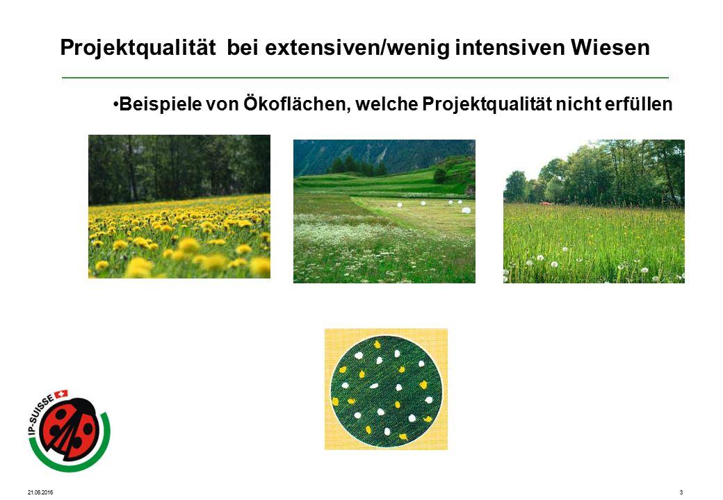 21.06.20164 Beispiele von Ökoflächen, welche Projektqualität erfüllen Projektqualität bei extensiven/wenig intensiven Wiesen