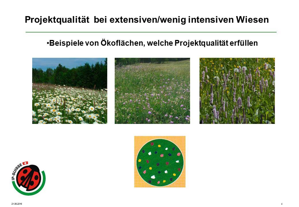 21.06.20165 Beispiele von Ökoflächen, welche Projektqualität knapp nicht erfüllen Projektqualität bei extensiven/wenig intensiven Wiesen Es sind nur vereinzelte Zeigerpflanzen vorhanden.