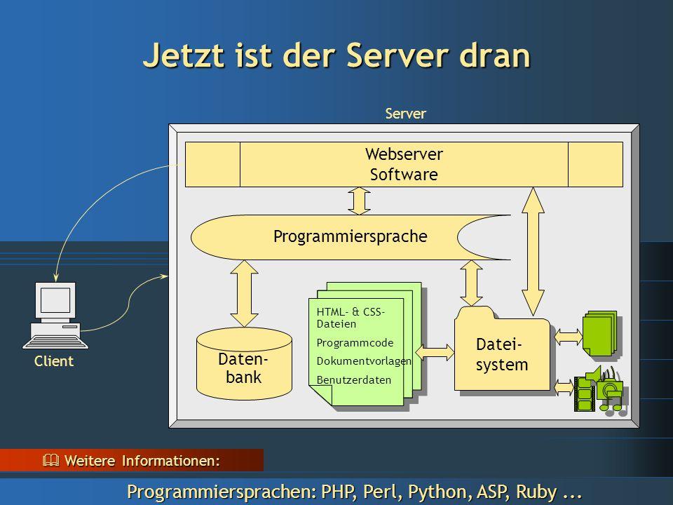 Jetzt ist der Server dran Server Client Datei- system Webserver Software Daten- bank Programmiersprache HTML- & CSS- Dateien Programmcode Dokumentvorlagen Benutzerdaten HTML- & CSS- Dateien Programmcode Dokumentvorlagen Benutzerdaten  Weitere Informationen: Programmiersprachen: PHP, Perl, Python, ASP, Ruby...