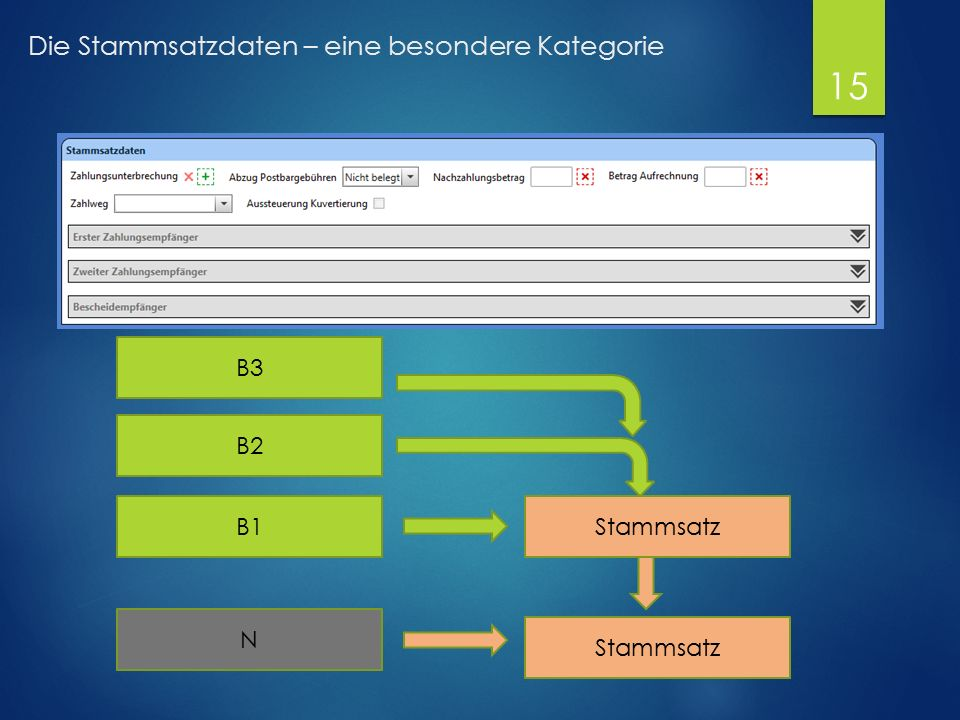 Die Stammsatzdaten – eine besondere Kategorie B2 B1Stammsatz N B3 15