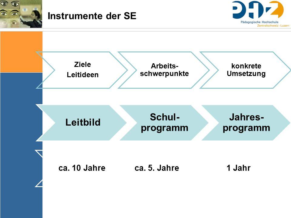 Instrumente der SE Ziele Leitideen Arbeits- schwerpunkte konkrete Umsetzung ca.