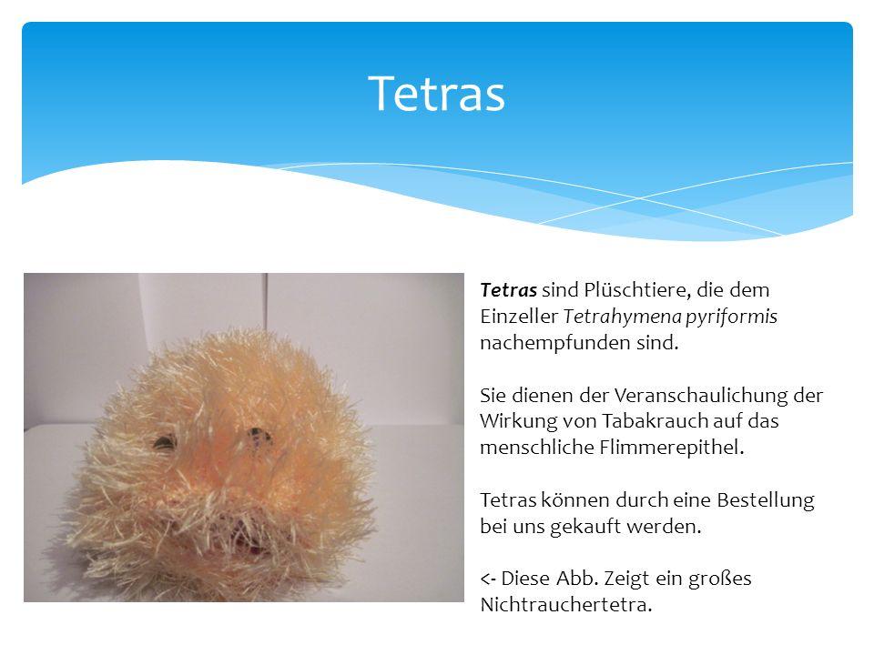 Tetras Tetras sind Plüschtiere, die dem Einzeller Tetrahymena pyriformis nachempfunden sind.