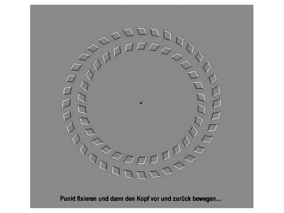 Konzentriere dich auf dem Kreuz in der Mitte, und nach eine Weile wirst du bemerken, dass der lau- fende lila Kreis GRÜN wird! Wenn du das Kreuz in de