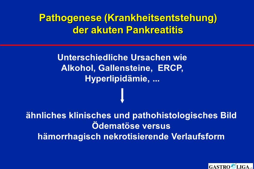 Pathogenese (Krankheitsentstehung) der akuten Pankreatitis Unterschiedliche Ursachen wie Alkohol, Gallensteine, ERCP, Hyperlipidämie,...