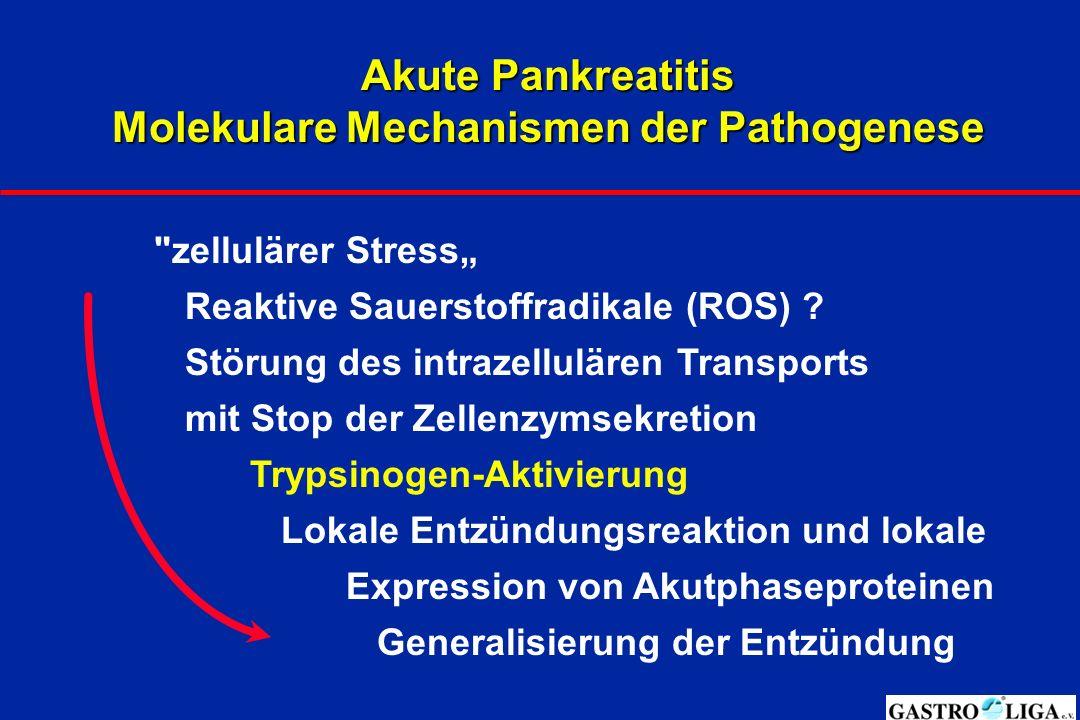 "Akute Pankreatitis Molekulare Mechanismen der Pathogenese zellulärer Stress"" Reaktive Sauerstoffradikale (ROS) ."
