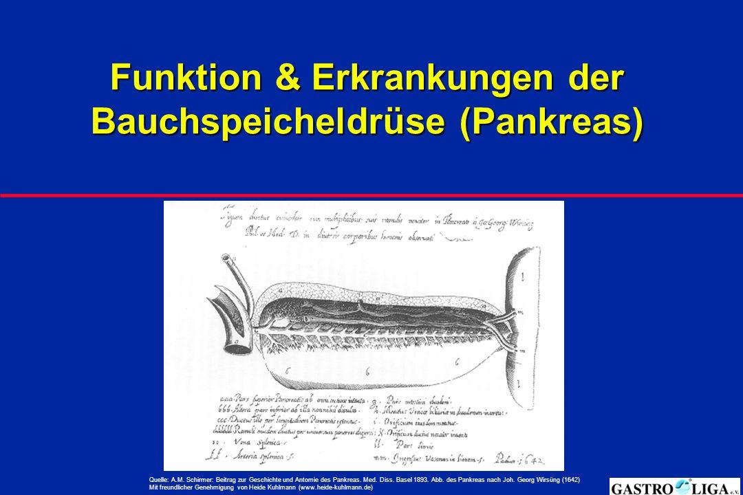 Funktion & Erkrankungen der Bauchspeicheldrüse (Pankreas) Quelle: A.M.