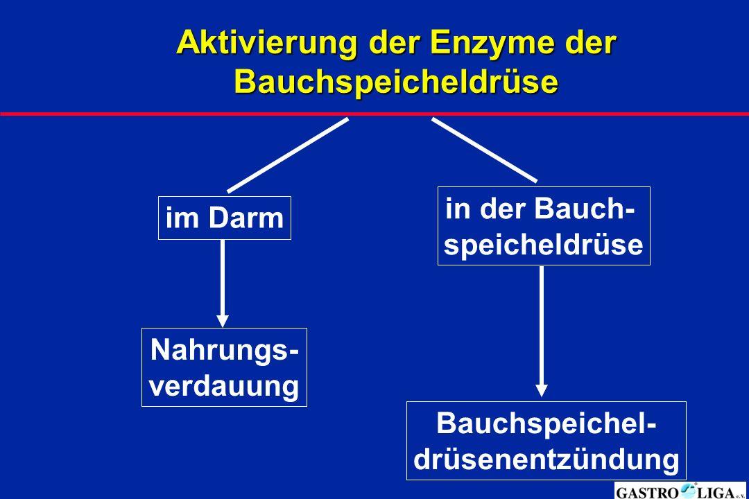 Aktivierung der Enzyme der Bauchspeicheldrüse im Darm Nahrungs- verdauung in der Bauch- speicheldrüse Bauchspeichel- drüsenentzündung
