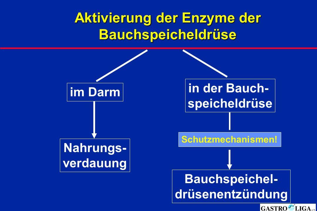 Aktivierung der Enzyme der Bauchspeicheldrüse im Darm Nahrungs- verdauung in der Bauch- speicheldrüse Bauchspeichel- drüsenentzündung Schutzmechanismen!