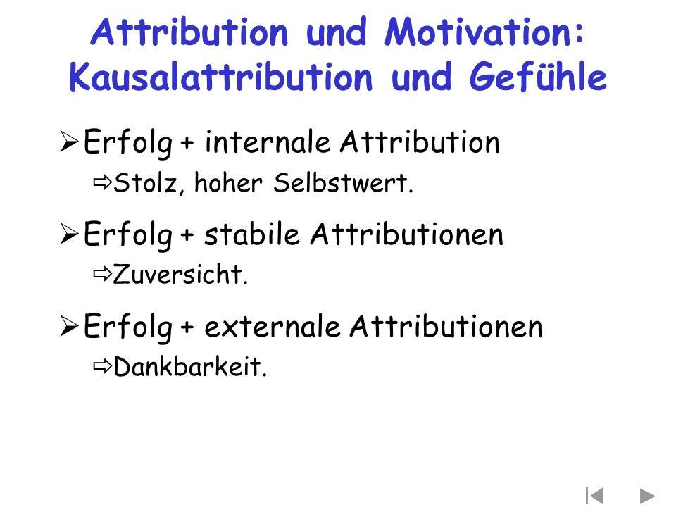 Attribution und Motivation: Kausalattribution und Gefühle  Erfolg + internale Attribution  Stolz, hoher Selbstwert.  Erfolg + stabile Attributionen