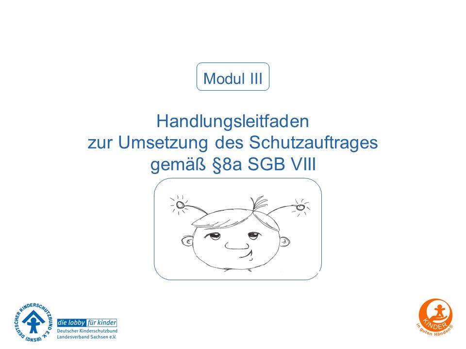 Modul III Handlungsleitfaden zur Umsetzung des Schutzauftrages gemäß §8a SGB VIII