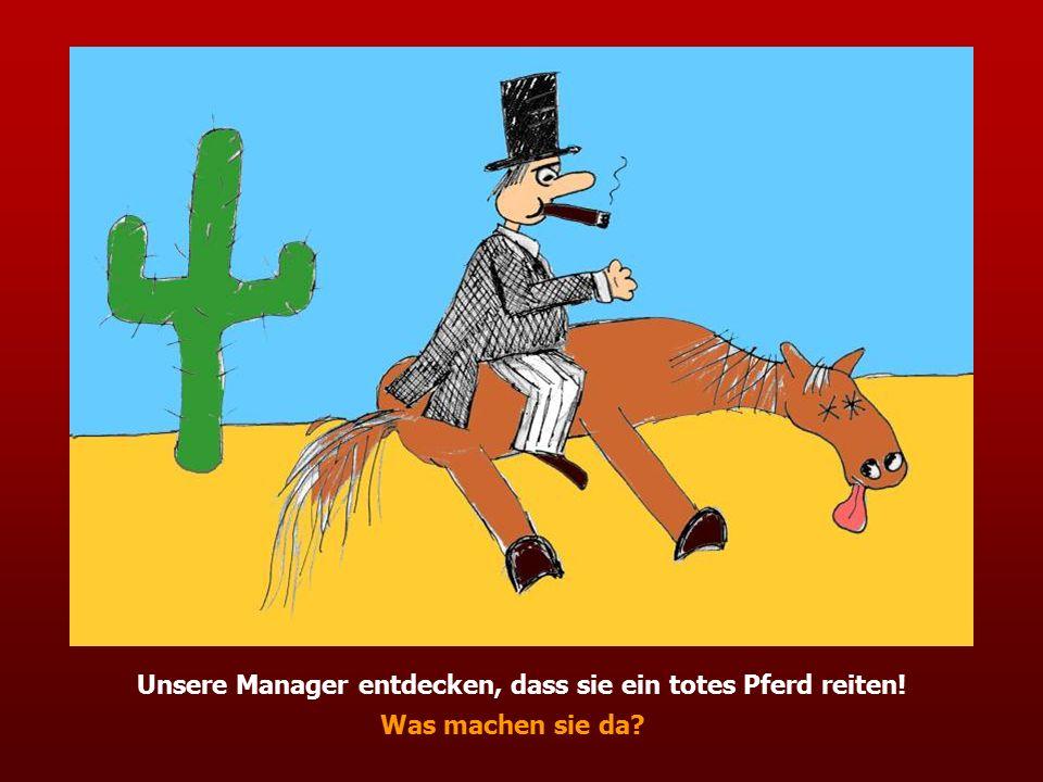 Unsere Manager entdecken, dass sie ein totes Pferd reiten! Was machen sie da?