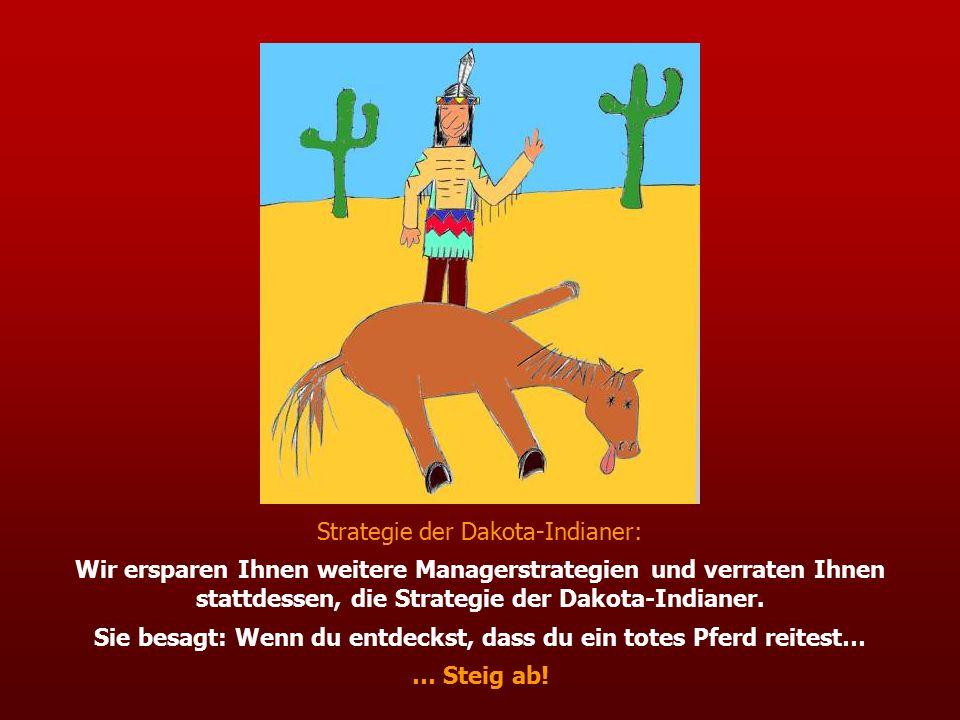Strategie der Dakota-Indianer: Wir ersparen Ihnen weitere Managerstrategien und verraten Ihnen stattdessen, die Strategie der Dakota-Indianer.
