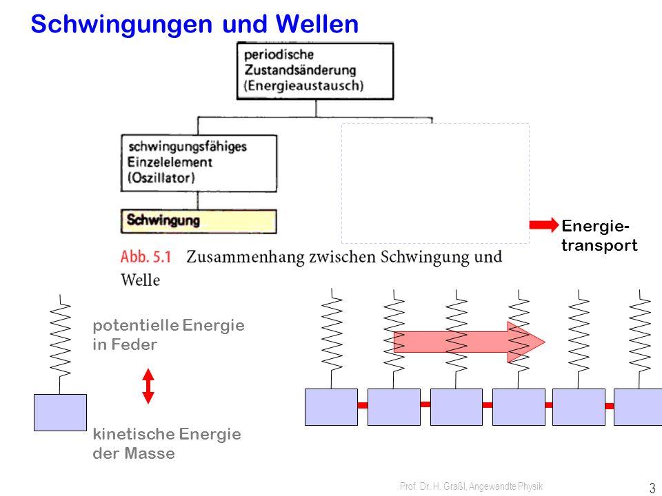 Prof. Dr. H. Graßl, Angewandte Physik 2 Schwingungen: örtlich stationär Wellen: breiten sich räumlich aus