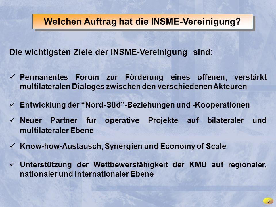 INSME – International Network for SMEs Die wichtigsten Ziele der INSME-Vereinigung sind: Permanentes Forum zur Förderung eines offenen, verstärkt mult