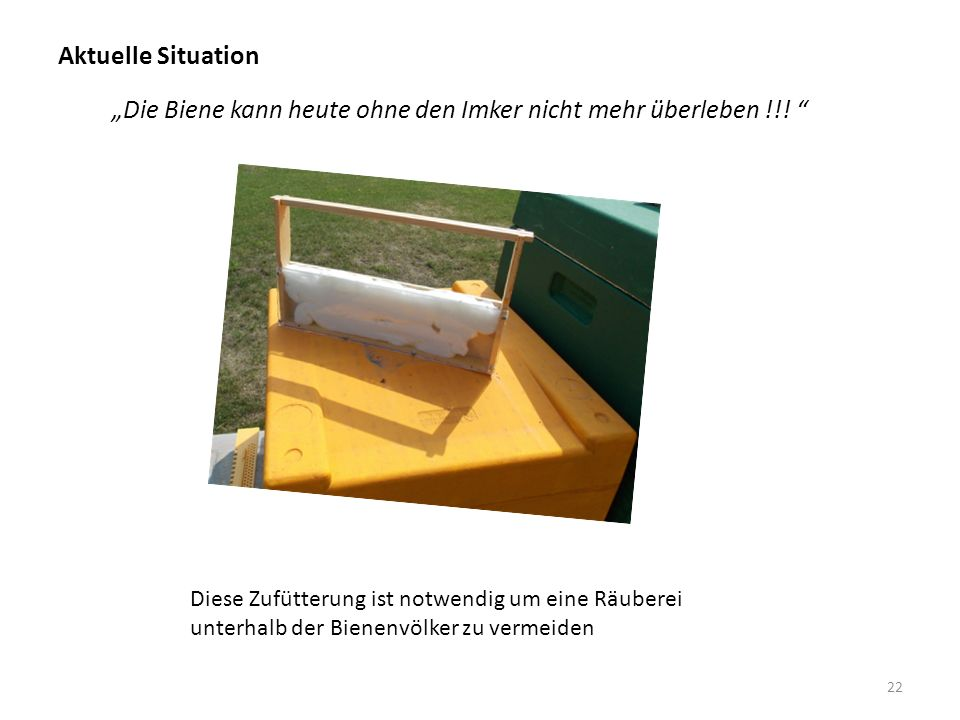 """Aktuelle Situation 22 """"Die Biene kann heute ohne den Imker nicht mehr überleben !!."""