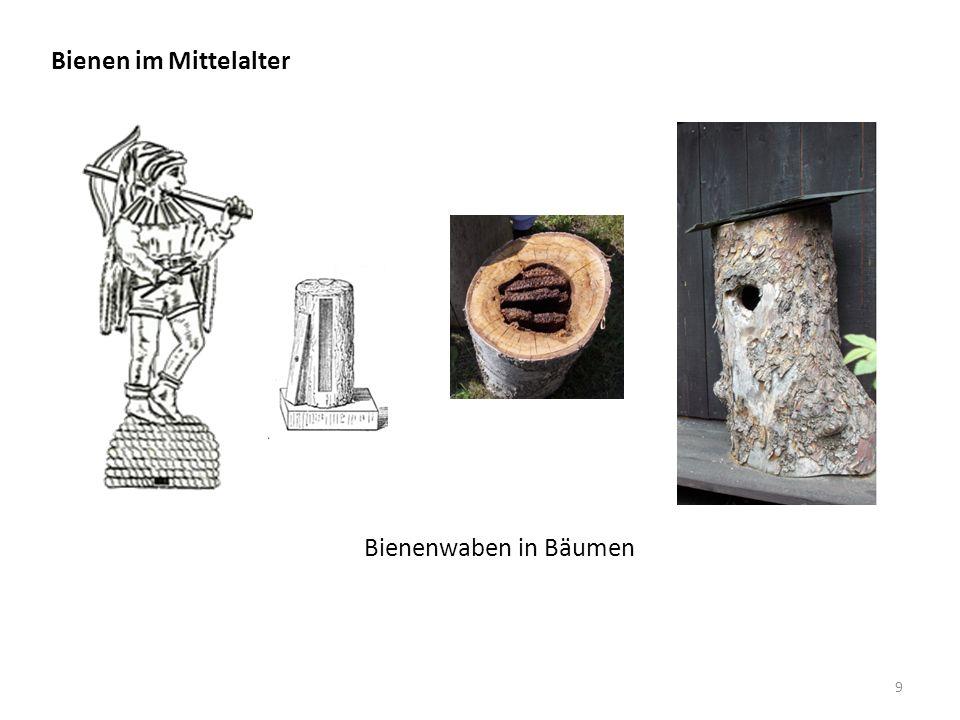Übergang von den Zeitlern zur Haus- oder Gartenbienenzucht. Bienen im Mittelalter 10
