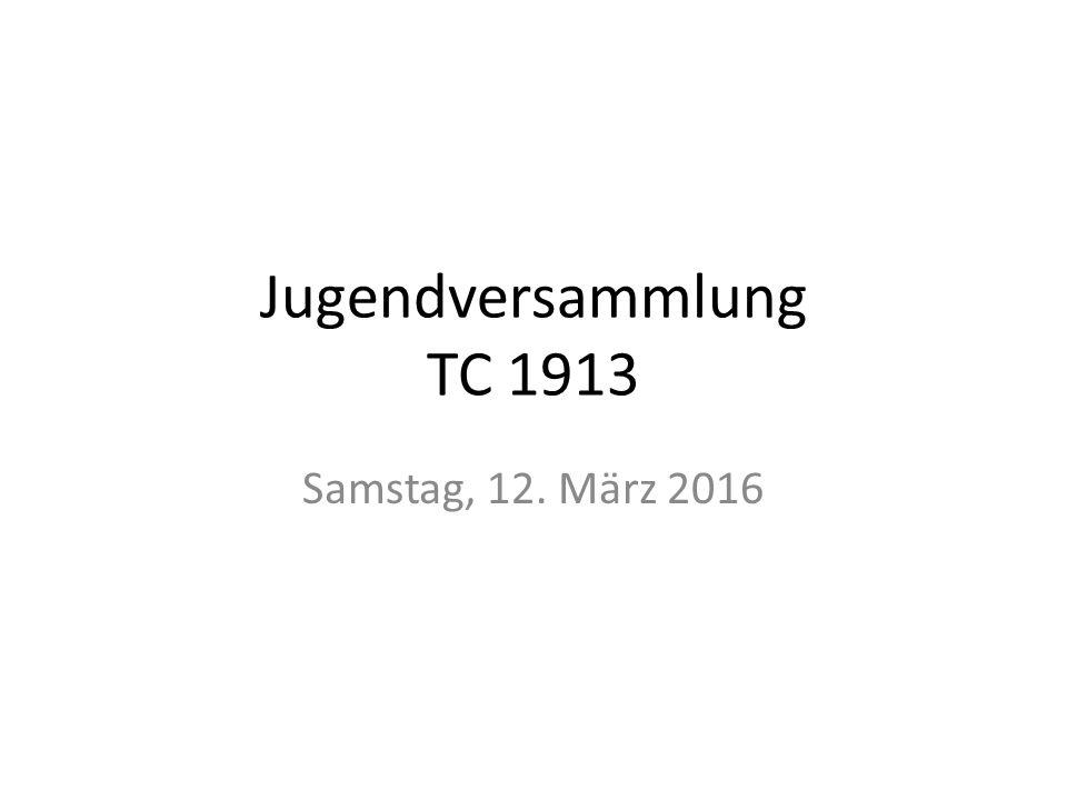 Tagesordnung Begrüßung Rückblick Wintersaison 2015/16 Mannschaften Sommer 2016 Weiterentwicklung des neuen Trainingskonzeptes Trainer im TC 1913 Leistungs- und Fördertraining Sommer 2016 Termine Sommer 2016
