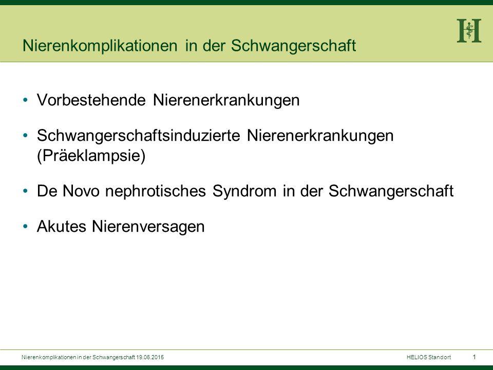 1 Nierenkomplikationen in der Schwangerschaft Vorbestehende Nierenerkrankungen Schwangerschaftsinduzierte Nierenerkrankungen (Präeklampsie) De Novo ne