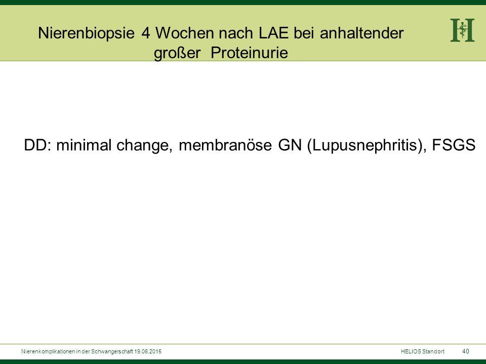 40 Nierenbiopsie 4 Wochen nach LAE bei anhaltender großer Proteinurie DD: minimal change, membranöse GN (Lupusnephritis), FSGS HELIOS StandortNierenko
