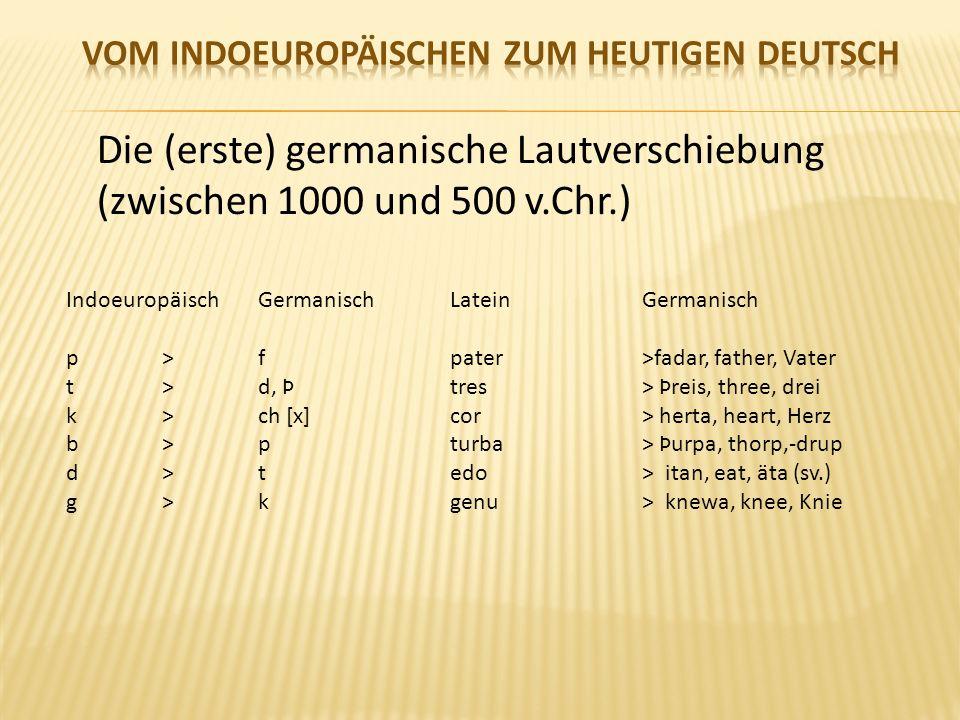 Die (erste) germanische Lautverschiebung (zwischen 1000 und 500 v.Chr.) IndoeuropäischGermanischLateinGermanisch p>fpater >fadar, father, Vater t > d, Þtres > Þreis, three, drei k > ch [x]cor > herta, heart, Herz b>pturba > Þurpa, thorp,-drup d>tedo > itan, eat, äta (sv.) g>kgenu > knewa, knee, Knie