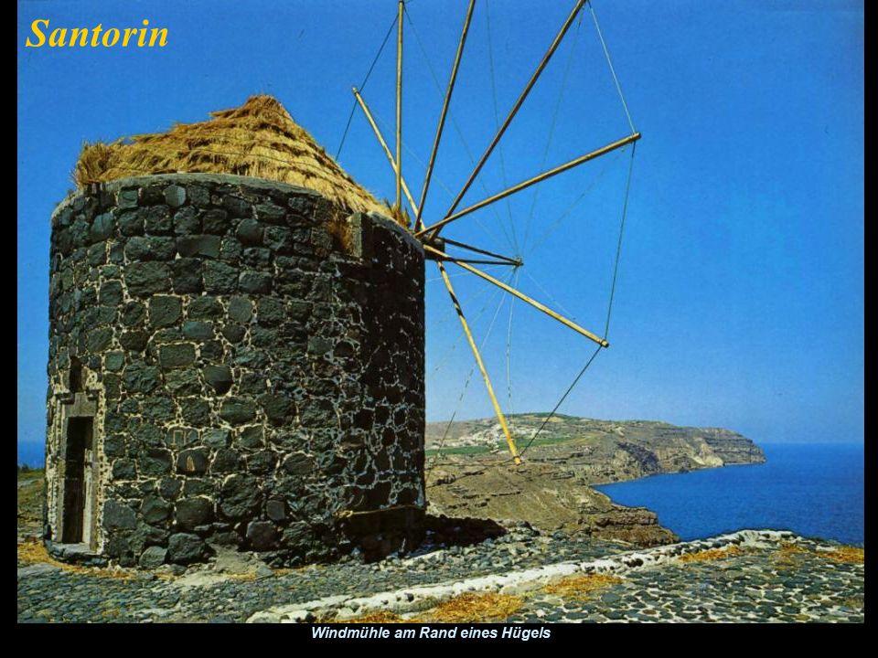 Einzigartig in Santorin sind Weinreben in einem Korb um sie vor dem Wind zu schützen. Santorin