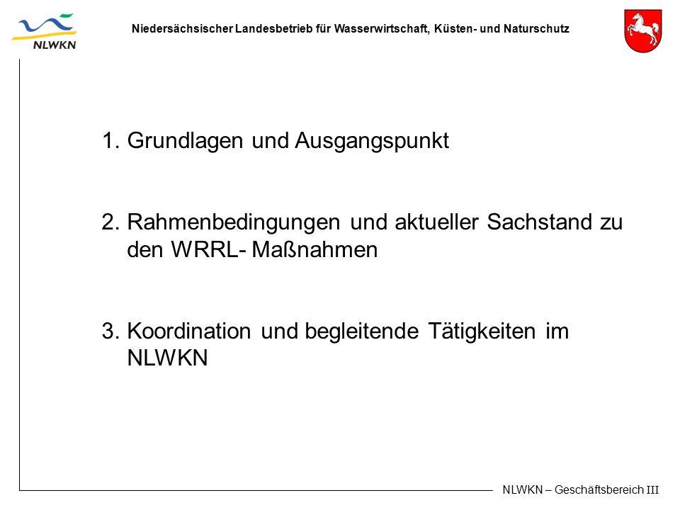 Niedersächsischer Landesbetrieb für Wasserwirtschaft, Küsten- und Naturschutz NLWKN – Geschäftsbereich III 1.Grundlagen und Ausgangspunkt 2.Rahmenbedi