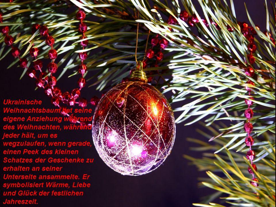 Ukrainische Weihnachtsbaum hat seine eigene Anziehung während des Weihnachten, während jeder hält, um es wegzulaufen, wenn gerade, einen Peek des kleinen Schatzes der Geschenke zu erhalten an seiner Unterseite ansammelte.