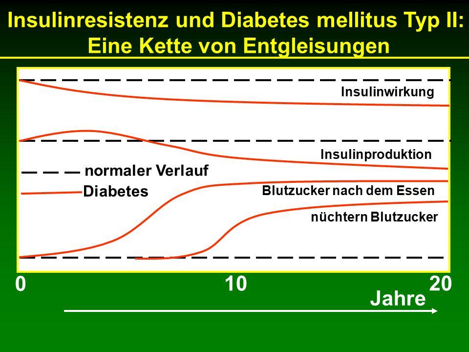 Insulinresistenz und Diabetes mellitus Typ II: Eine Kette von Entgleisungen Blutzucker nach dem Essen nüchtern Blutzucker normaler Verlauf Diabetes Jahre 0 20 10 Insulinwirkung Insulinproduktion