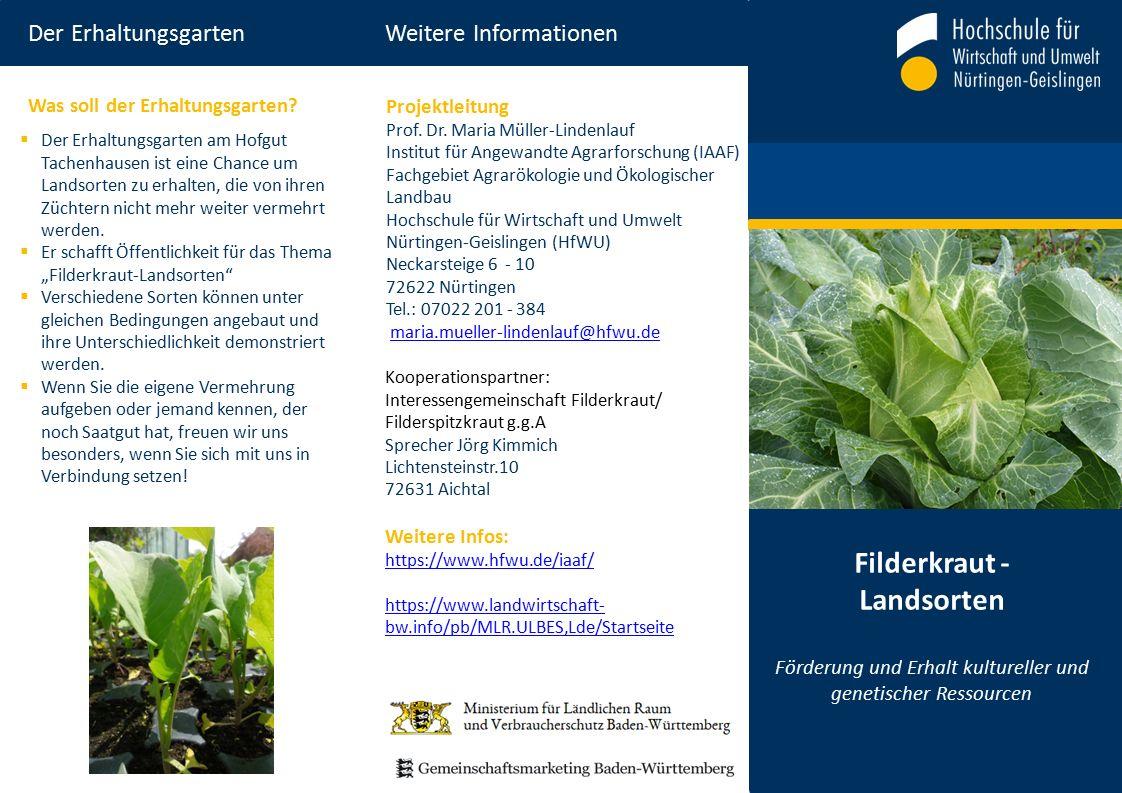Der Erhaltungsgarten Weitere Informationen Filderkraut - Landsorten Förderung und Erhalt kultureller und genetischer Ressourcen Projektleitung Prof.