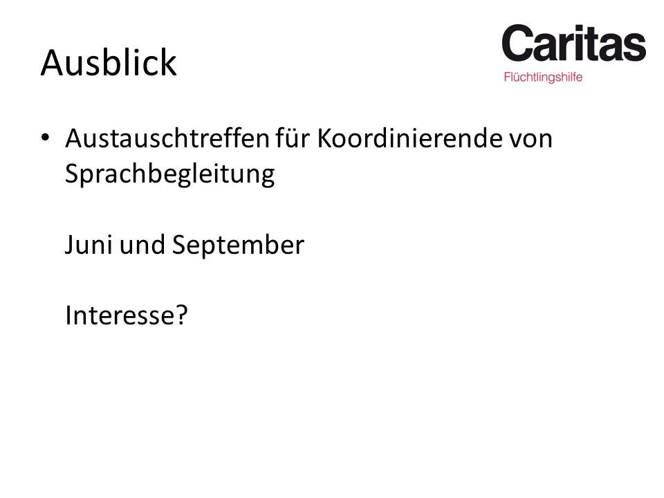 Ausblick Austauschtreffen für Koordinierende von Sprachbegleitung Juni und September Interesse?