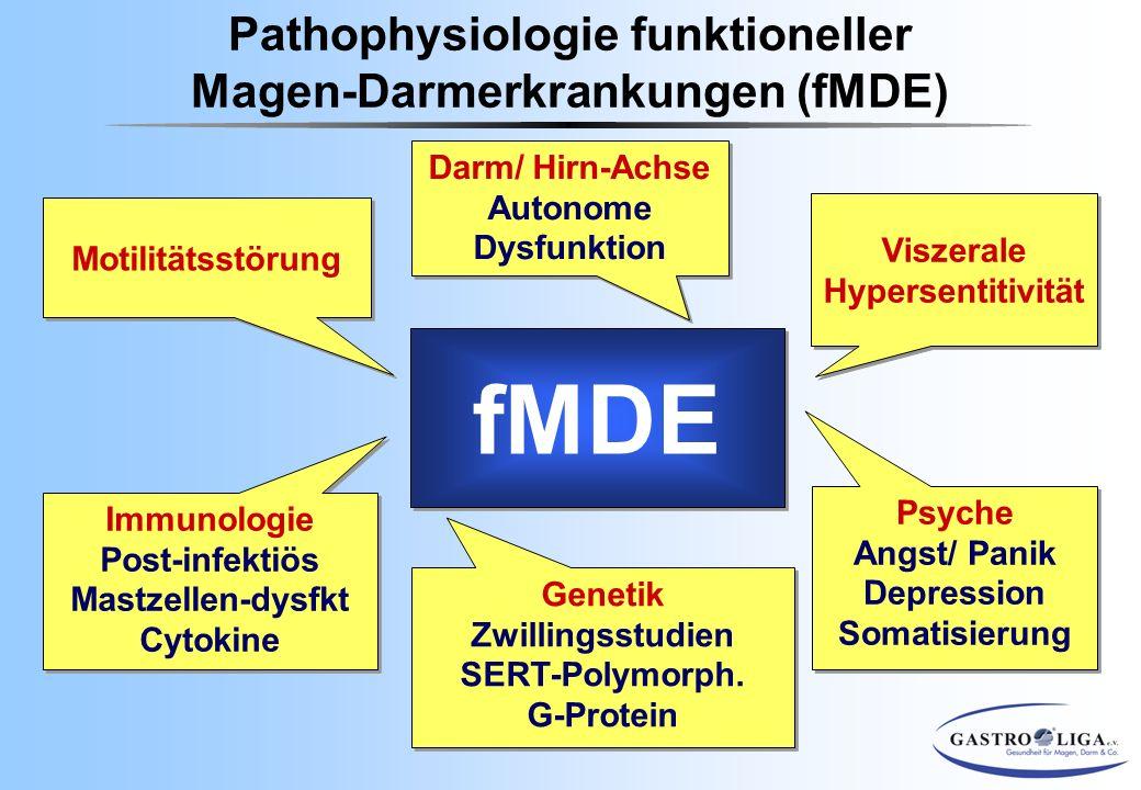 Viszerale Hypersentitivität Psyche Angst/ Panik Depression Somatisierung Psyche Angst/ Panik Depression Somatisierung Genetik Zwillingsstudien SERT-Po