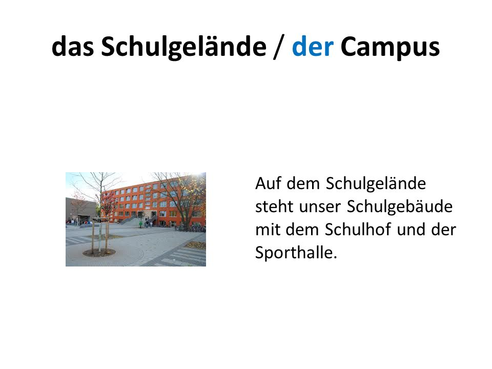 das Schulgelände / der Campus Auf dem Schulgelände steht unser Schulgebäude mit dem Schulhof und der Sporthalle.