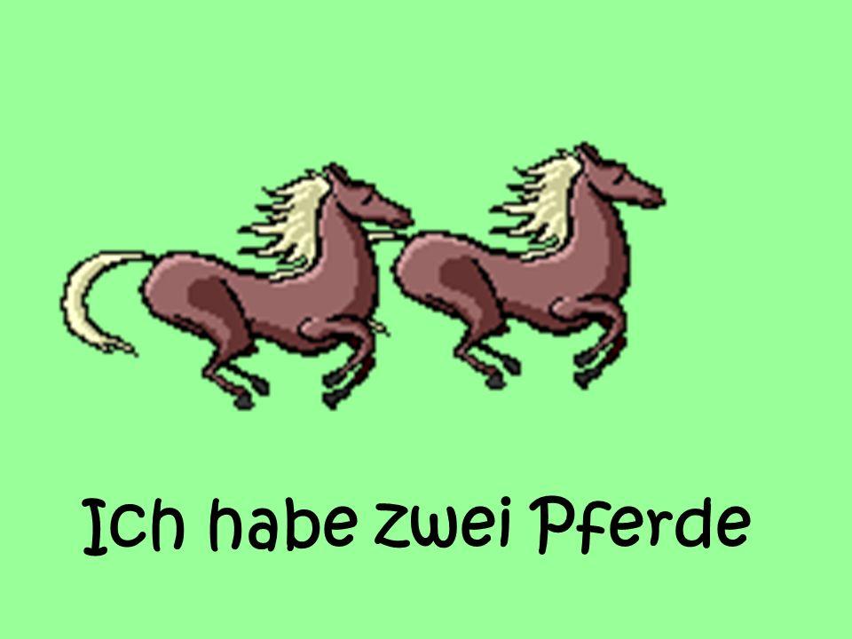 Ich habe zwei Pferde