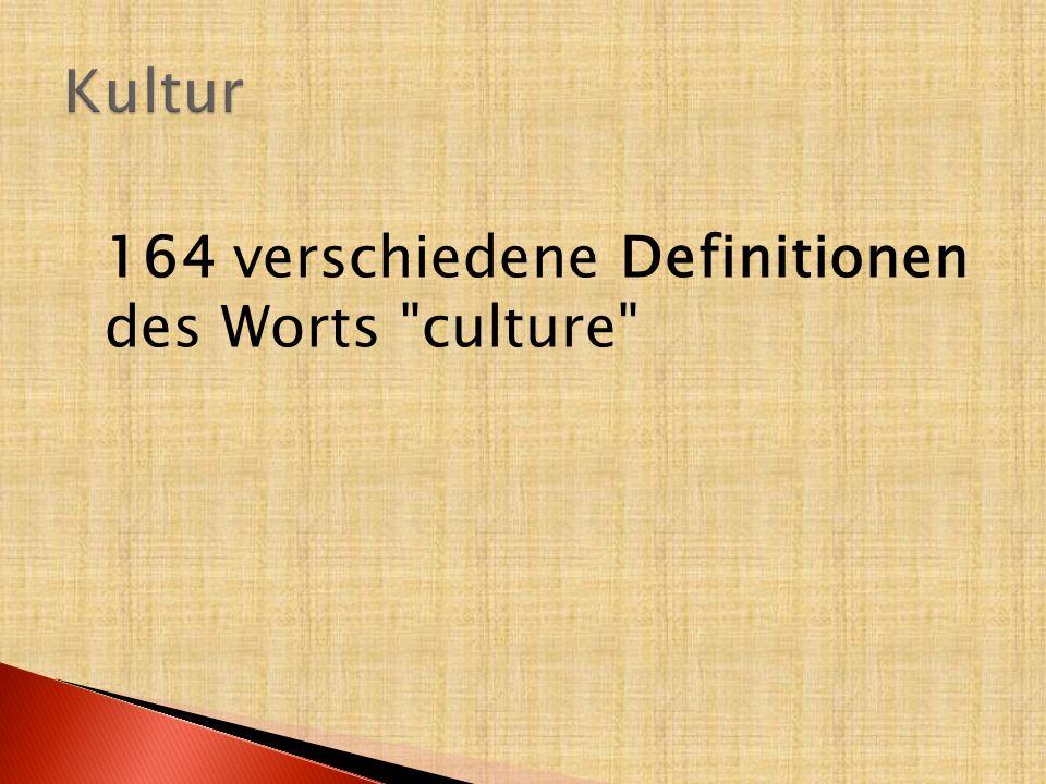 Die Kultur = Orientierungssystem  für eine Gruppe, eine Gesellschaft  erlaubt die Interpretierung der Umwelt, der Welt rundum der Mitglieder dieser Gruppe  Richtungs-, Bedeutungs-, Funktions-, Glieder- und Begriffssystem