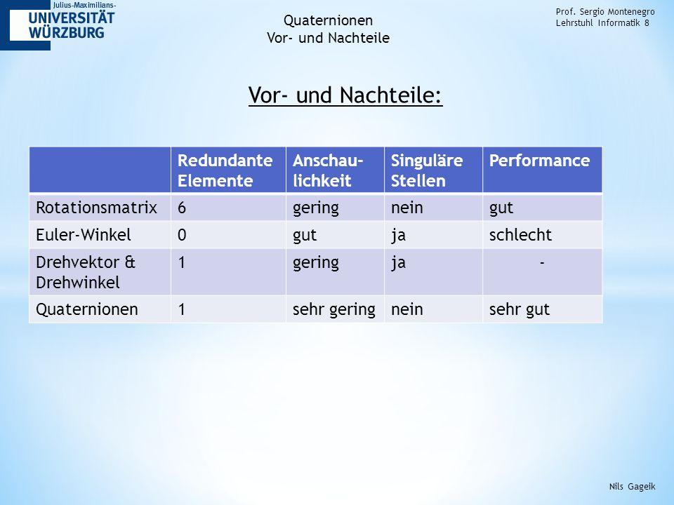 Vor- und Nachteile: Prof.