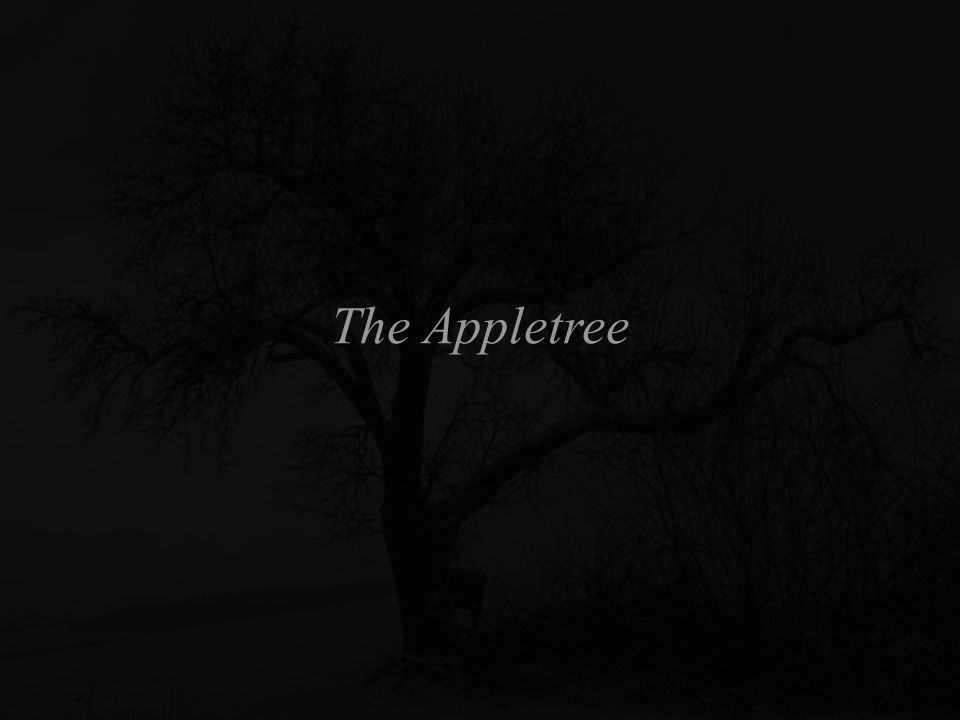 The Appletree