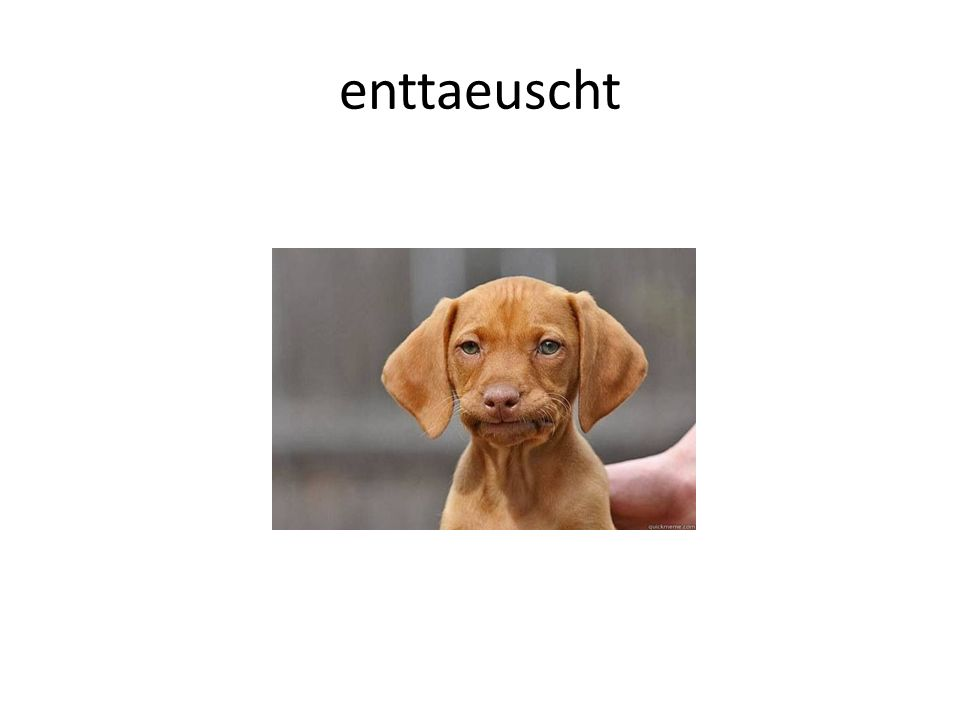enttaeuscht