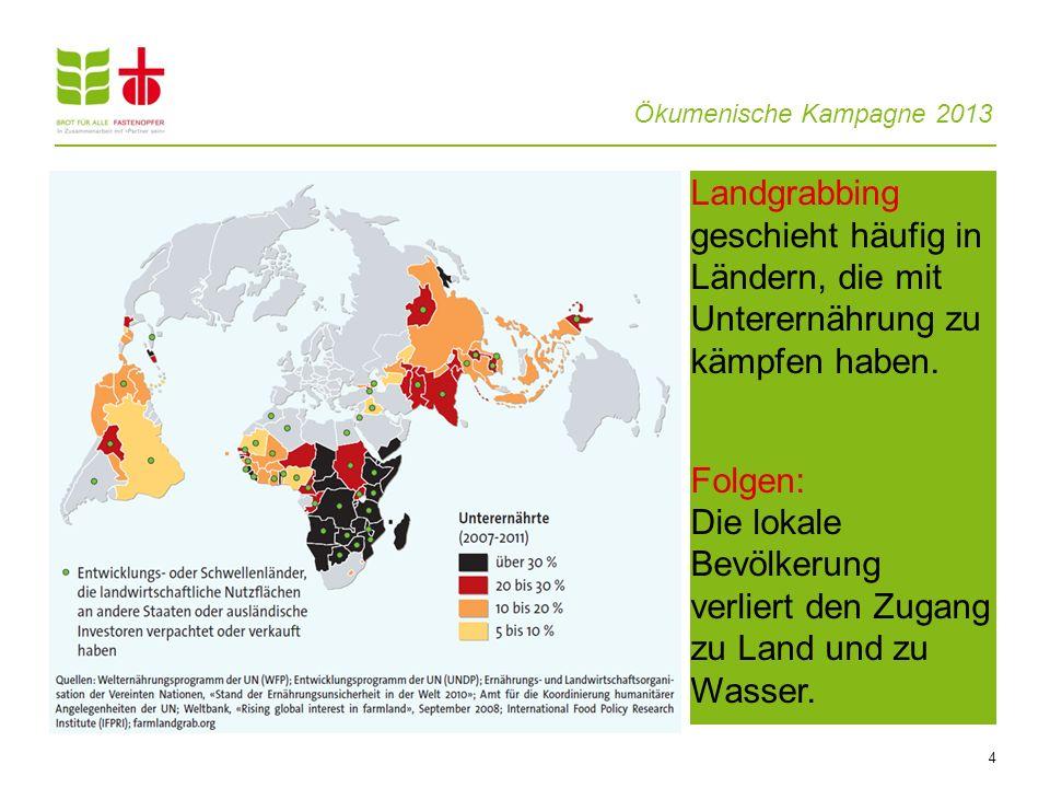 Ökumenische Kampagne 2013 4 Landgrabbing geschieht häufig in Ländern, die mit Unterernährung zu kämpfen haben. Folgen: Die lokale Bevölkerung verliert