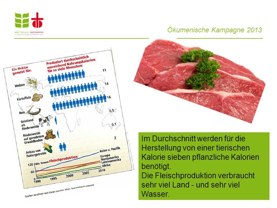 Ökumenische Kampagne 2013 Im Durchschnitt werden für die Herstellung von einer tierischen Kalorie sieben pflanzliche Kalorien benötigt. Die Fleischpro