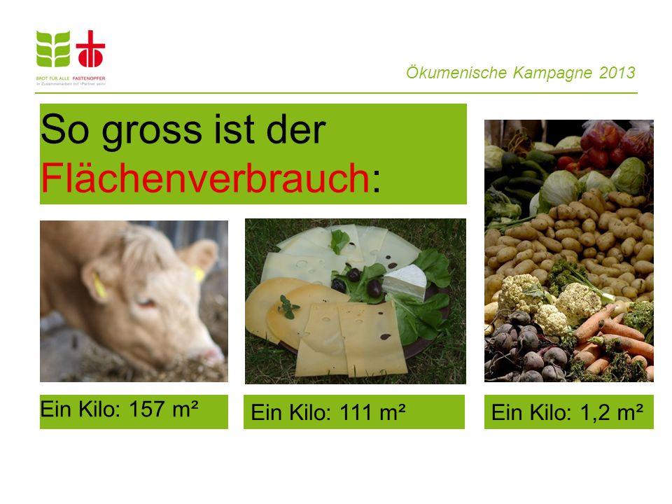 Ökumenische Kampagne 2013 So gross ist der Flächenverbrauch: Ein Kilo: 157 m² Ein Kilo: 111 m²Ein Kilo: 1,2 m²