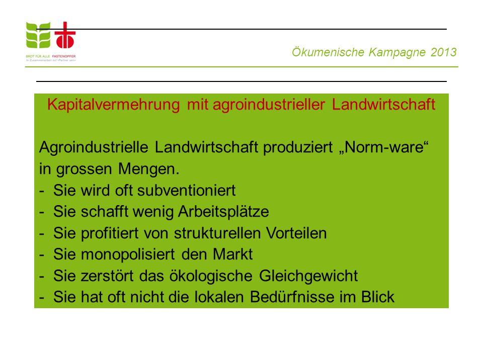 """Ökumenische Kampagne 2013 Kapitalvermehrung mit agroindustrieller Landwirtschaft Agroindustrielle Landwirtschaft produziert """"Norm-ware"""" in grossen Men"""