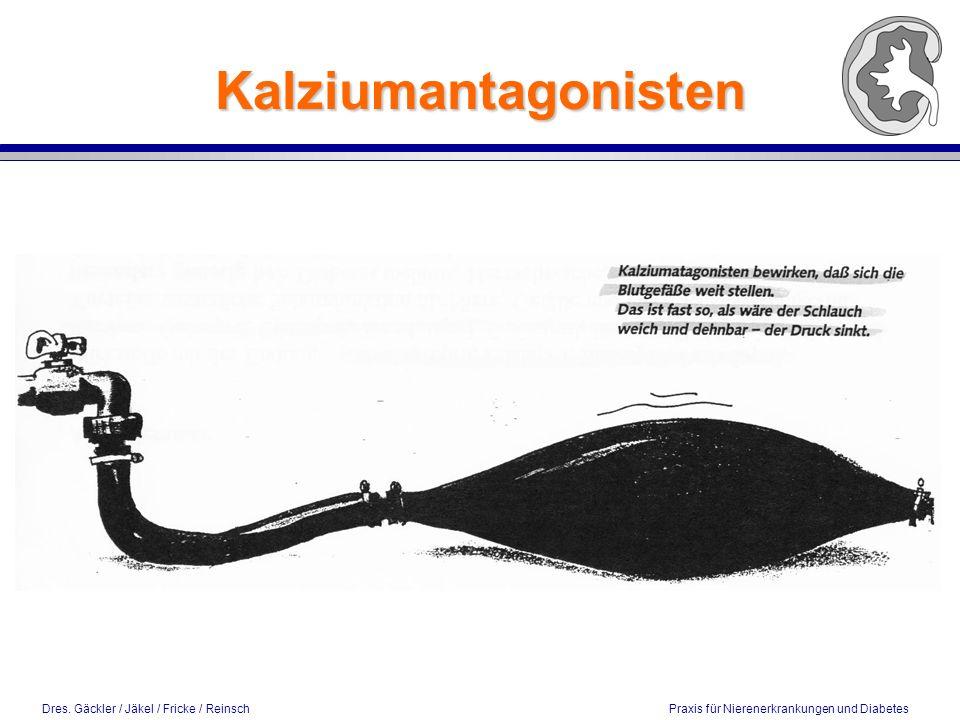 Kalziumantagonisten