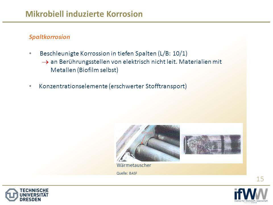 Mikrobiell induzierte Korrosion 15 Spaltkorrosion Beschleunigte Korrossion in tiefen Spalten (L/B: 10/1)  an Berührungsstellen von elektrisch nicht leit.