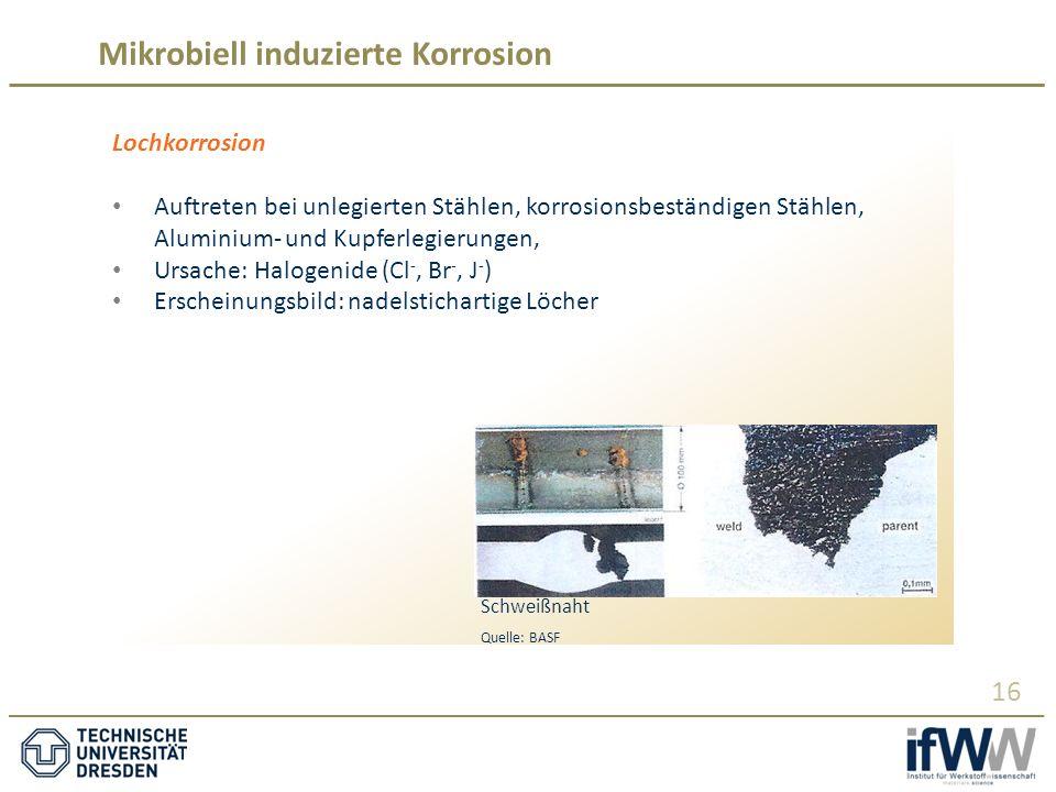 Mikrobiell induzierte Korrosion 16 Lochkorrosion Auftreten bei unlegierten Stählen, korrosionsbeständigen Stählen, Aluminium- und Kupferlegierungen, Ursache: Halogenide (Cl -, Br -, J - ) Erscheinungsbild: nadelstichartige Löcher Schweißnaht Quelle: BASF