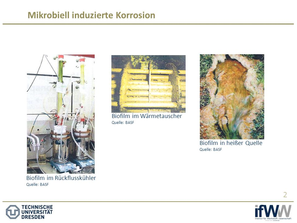 Mikrobiell induzierte Korrosion 2 Biofilm im Wärmetauscher Quelle: BASF Biofilm im Rückflusskühler Quelle: BASF Biofilm in heißer Quelle Quelle: BASF