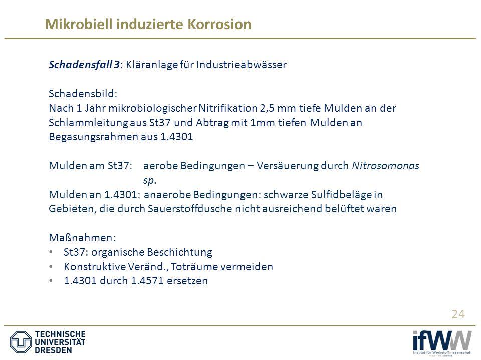 Mikrobiell induzierte Korrosion 24 Schadensfall 3: Kläranlage für Industrieabwässer Schadensbild: Nach 1 Jahr mikrobiologischer Nitrifikation 2,5 mm tiefe Mulden an der Schlammleitung aus St37 und Abtrag mit 1mm tiefen Mulden an Begasungsrahmen aus 1.4301 Mulden am St37: aerobe Bedingungen – Versäuerung durch Nitrosomonas sp.