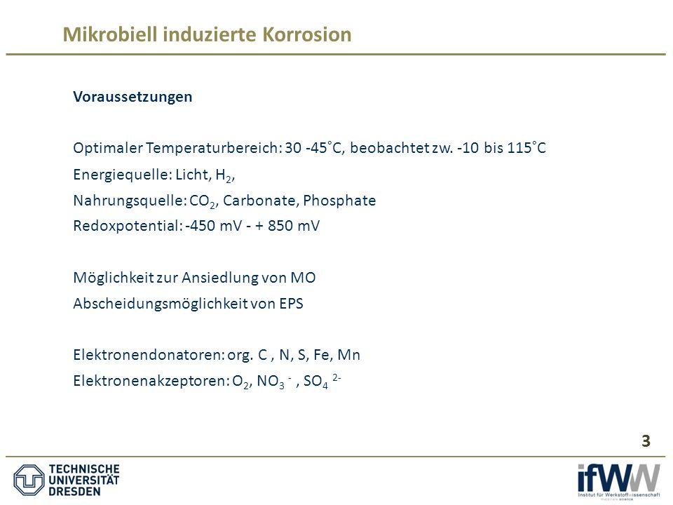 Mikrobiell induzierte Korrosion Voraussetzungen Optimaler Temperaturbereich: 30 -45°C, beobachtet zw.