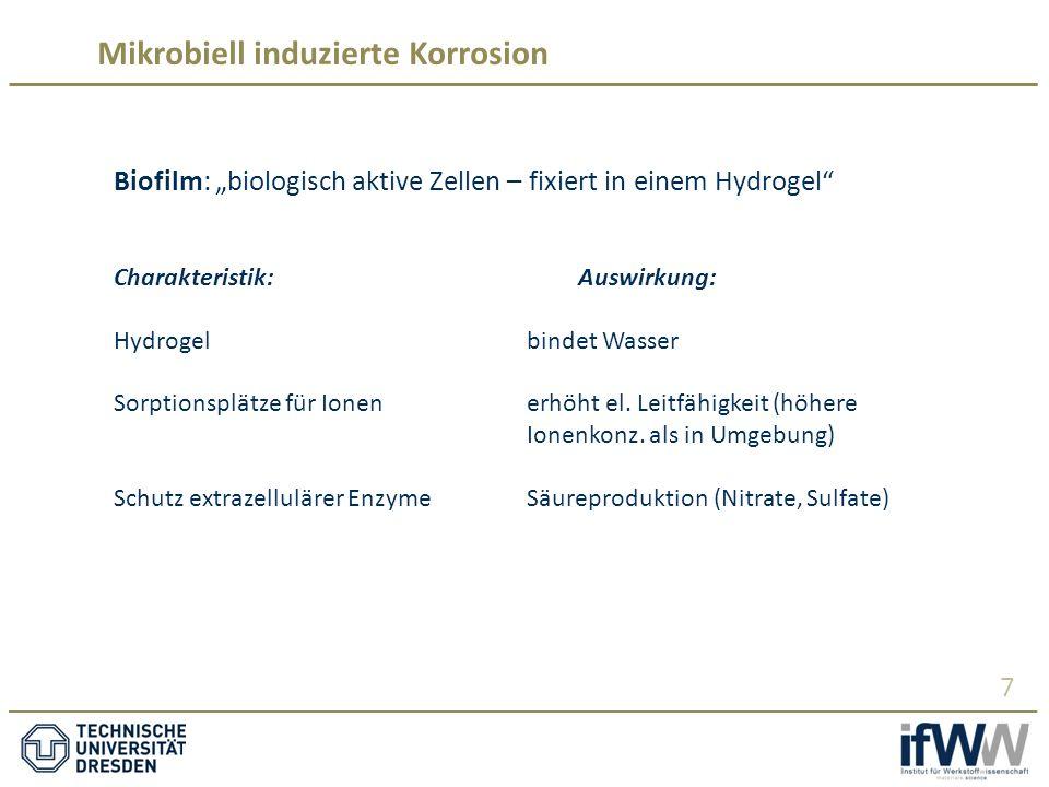 """Mikrobiell induzierte Korrosion 7 Biofilm: """"biologisch aktive Zellen – fixiert in einem Hydrogel Charakteristik:Auswirkung: Hydrogelbindet Wasser Sorptionsplätze für Ionenerhöht el."""