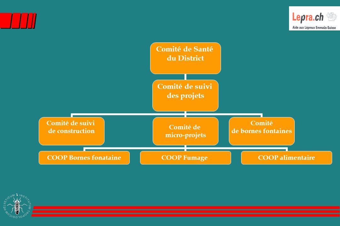 Comité de Santé du District Comité de suivi des projets Comité de suivi de construction Comité de micro-projets COOP Bornes fonataine COOP FumageCOOP alimentaire Comité de bornes fontaines